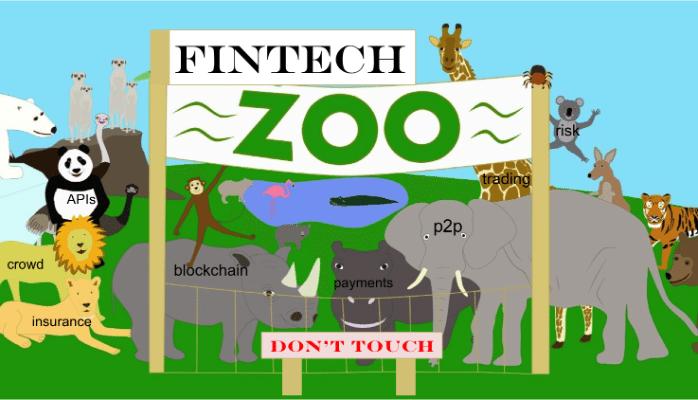Fintech Zoo