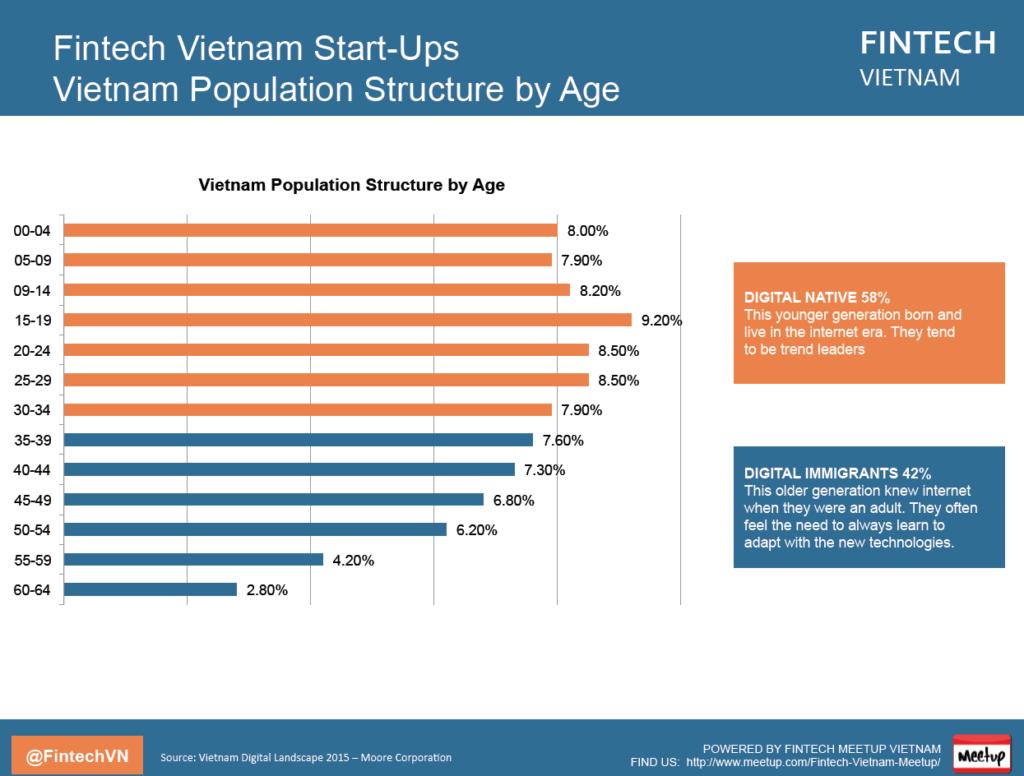 Fintech Vietnam Report Age Structure