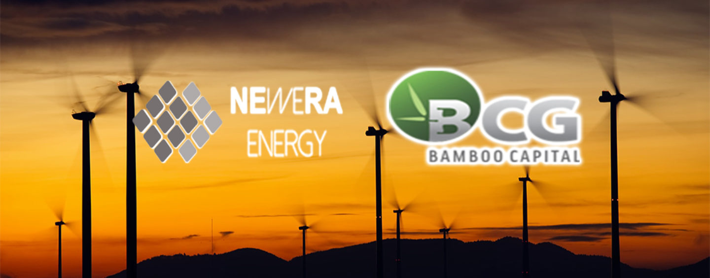 Newera Energy To Invest Up To Us$50 Million In Renewable Energy Projects