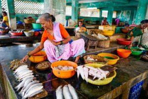 India P2P Lending