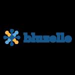 Top Fintech Companies Startups Singapore - bluzelle