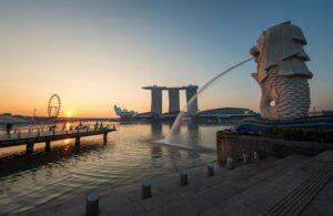 Sea Lion The Business Asia Park Lion Core Zone, Max Pixel