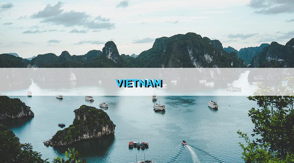 vietnam startup report