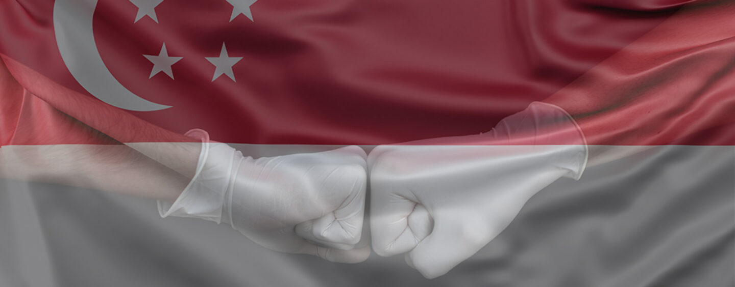 How Singapore is Helping its Fintech Stay Afloat During the COVID-19 Crisis